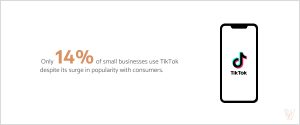 Only 14% of small businesses use TikTok despite its surge in popularity with consumers.
