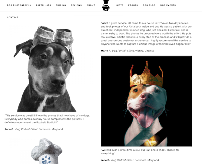 puptrait studio reviews and case studies b2c example